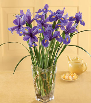 Blooming Iris Bouquet