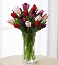 Deluxe Tender Tulips Bouquet