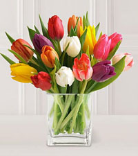 15 Stem Mixed Tulips