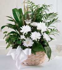 FTD's Peaceful Garden Basket