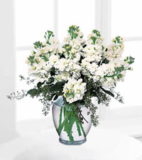 Stylish Stock Bouquet