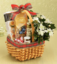 Taste of the Season Gourmet Basket