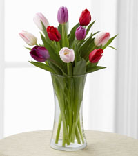Tender Tulips Bouquet