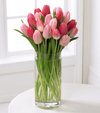 FTD's Premium Tender Tulips Bouquet