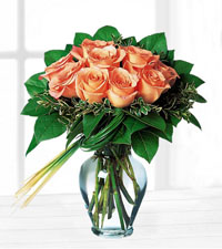 Perfectly Peachy Roses